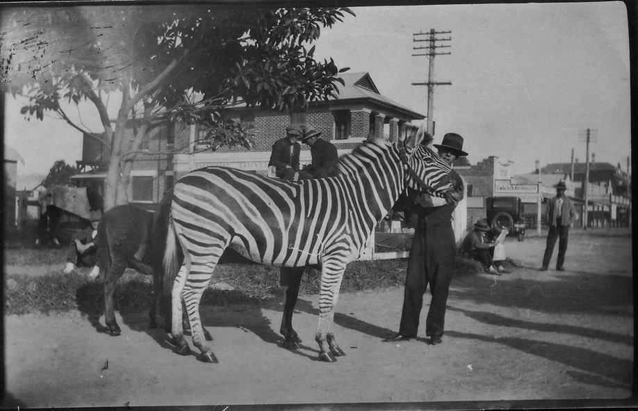 Circus Mullumbimby
